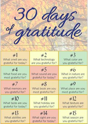 30 days of gratitude snipet